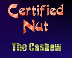 Certifed Nut: The Cashew